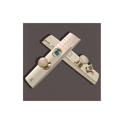 千御物联Q1000F指纹锁家用智能锁电子锁防盗门锁密码锁电控锁
