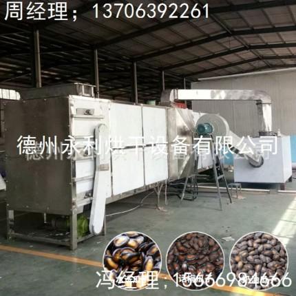 新品上市 水洗瓜子烘干设备 不锈钢食品干燥设备