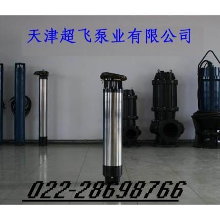 天津不锈钢喷泉泵