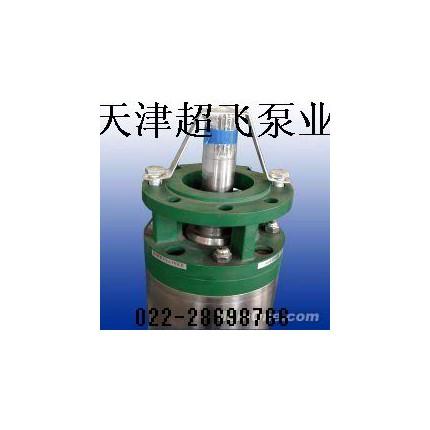 天津海水潜水泵,不锈钢潜水泵